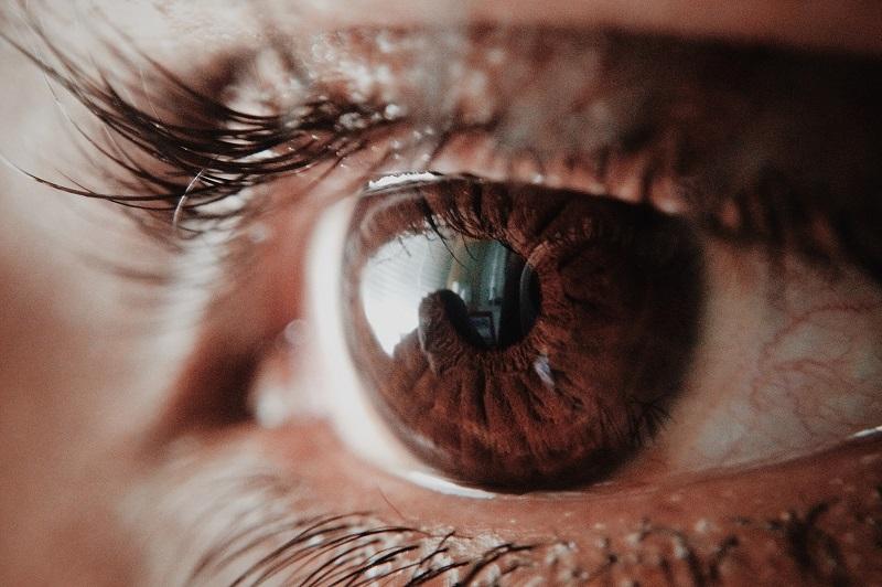 New Hope for Better Treatments Against Macular Degeneration